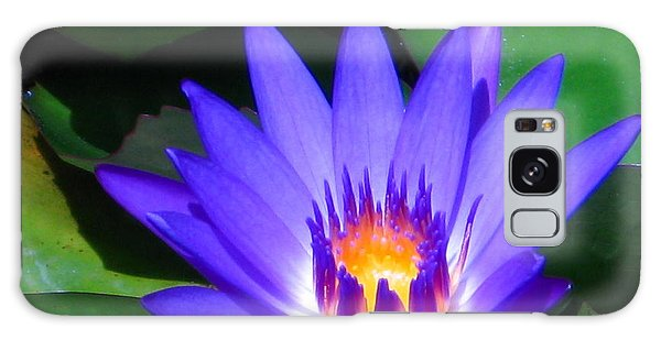 Purple Majesty Galaxy Case