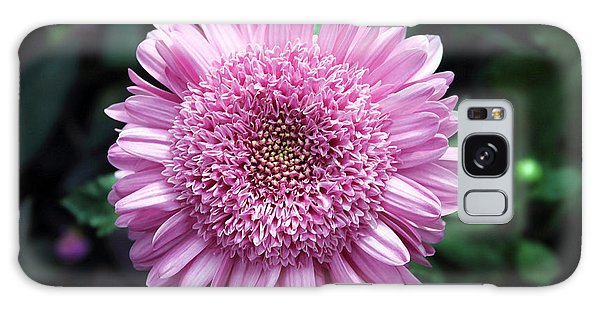 Purple Mum I Galaxy Case by Mary Haber
