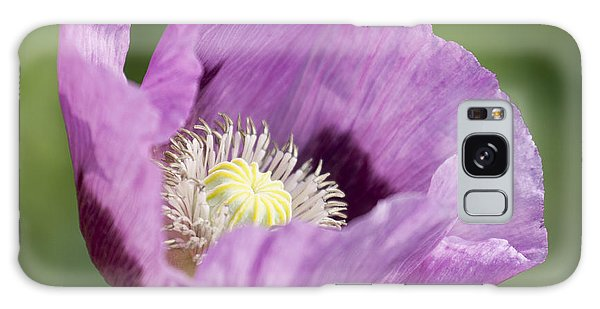 Purple Poppy Galaxy Case