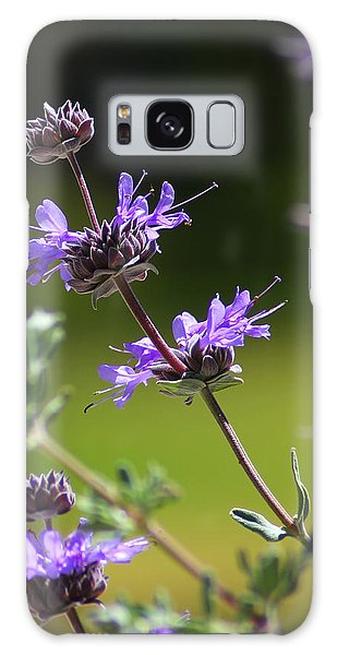 Purple Sage Galaxy Case by Richard Stephen