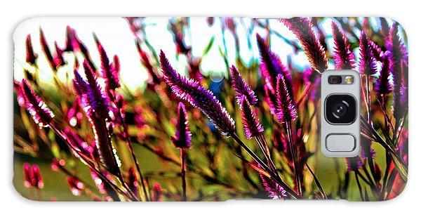 Purpleness Galaxy Case