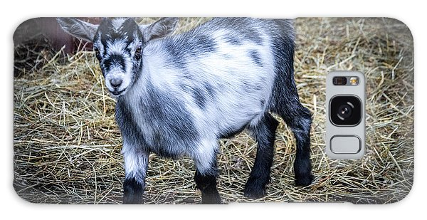 Pygmy Goat Galaxy Case