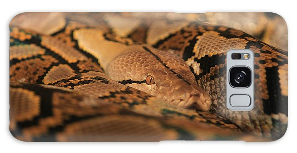 Python Galaxy Case