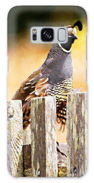 Quail Lookout Galaxy Case