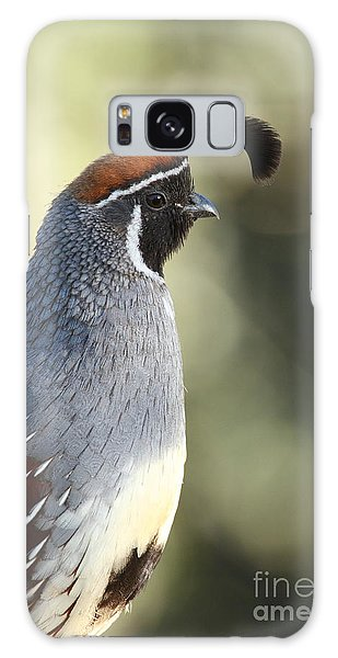 Quail Portrait Galaxy Case