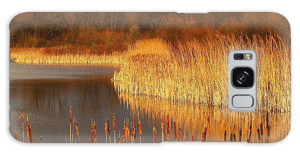 Quakertown Marsh Before Spring Storm Galaxy Case