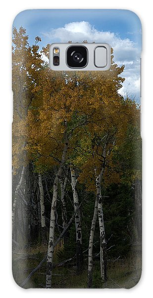 Quaking Aspen Galaxy Case