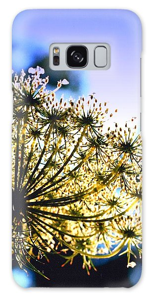 Queen Anne's Lace II Galaxy Case by Diane Merkle