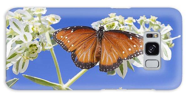 Queen Butterfly Galaxy Case