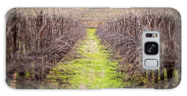 Quiet Vineyard Galaxy Case by Mike Lee