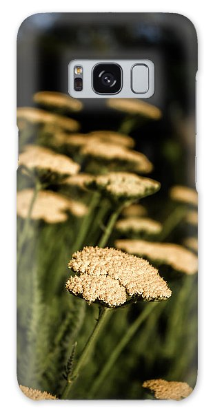 Quivering Yarrow Galaxy Case