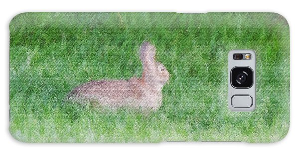 Rabbit In The Grass Galaxy Case