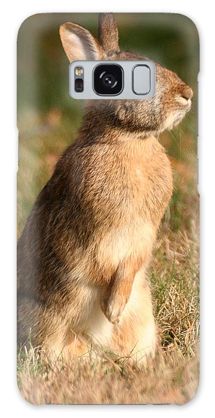 Rabbit Standing In The Sun Galaxy Case
