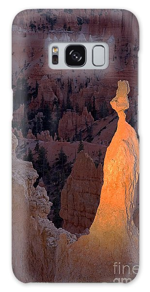Rabbit Sunset Point Bryce Canyon National Park Galaxy Case
