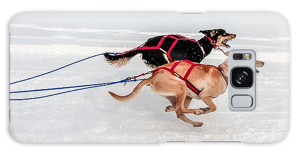 Racing Sled Dogs Galaxy Case