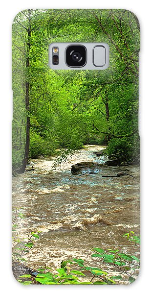 Raging Waters - West Virginia Backroad Galaxy Case