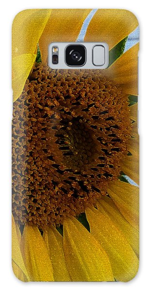 Rahab's Sunflower Galaxy Case by Jeff Iverson