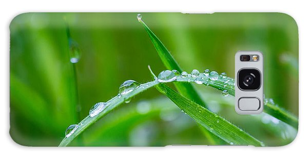 Rain Covered Grass Galaxy Case