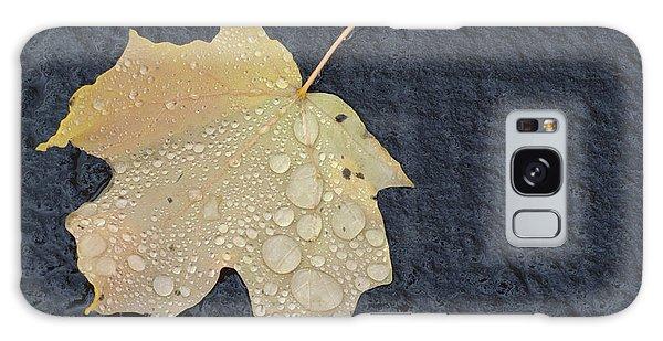 Rain Drops On A Yellow Maple Leaf Galaxy Case