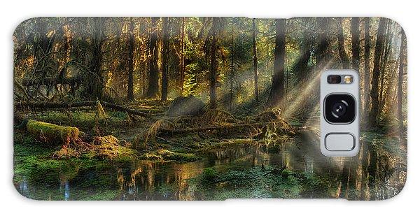 Rain Forest Sunbeams Galaxy Case