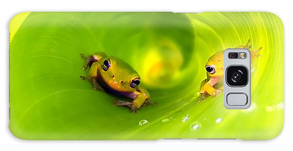 Rain Frogs Peeking Out Galaxy Case