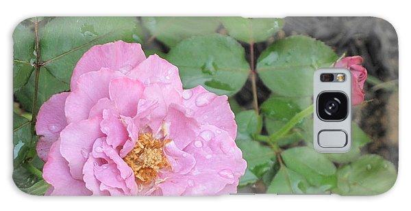 Rain Kissed Rose Galaxy Case