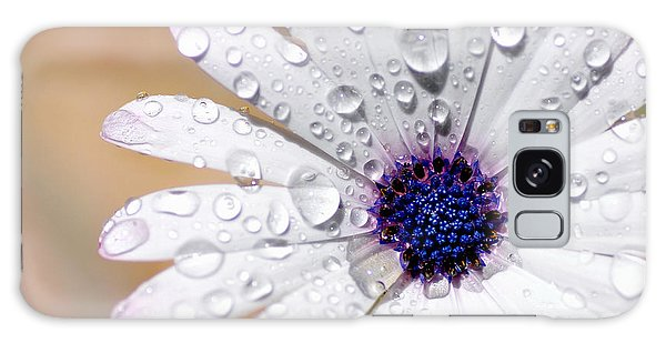 Rain Soaked Daisy Galaxy Case