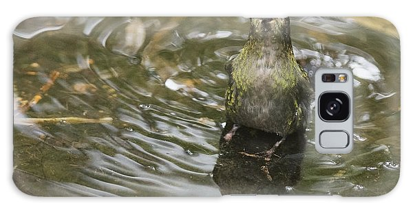 Rainbow-bearded Thornbill Hummingbird Galaxy Case