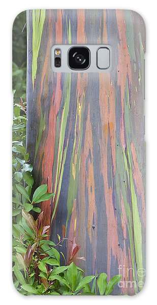 Rainbow Eucalyptus Galaxy Case