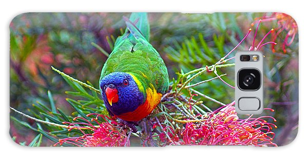 Rainbow Lorikeet I Galaxy Case