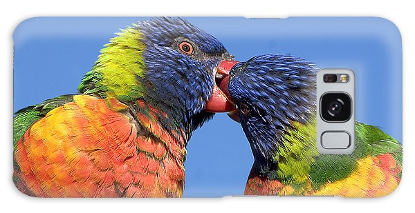 Rainbow Lorikeets Galaxy Case by Steven Ralser