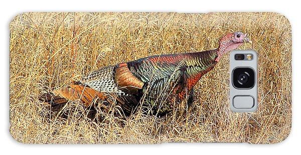 Rainbow Turkey Galaxy Case
