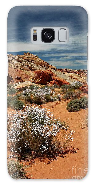 513p Rainbow Vista In The Valley Of Fire Galaxy Case