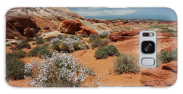 601p Rainbow Vista In The Valley Of Fire Galaxy Case