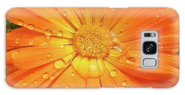 Raindrops On Orange Daisy Flower Galaxy Case