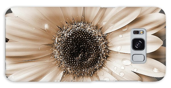 Raindrops On Gerber Daisy Sepia Galaxy Case by Jennie Marie Schell