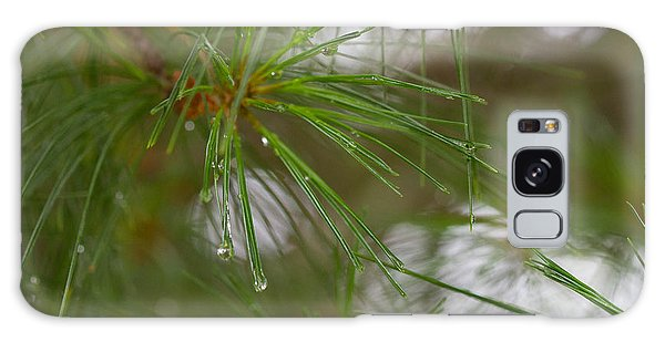 Rainy Day Pines Galaxy Case