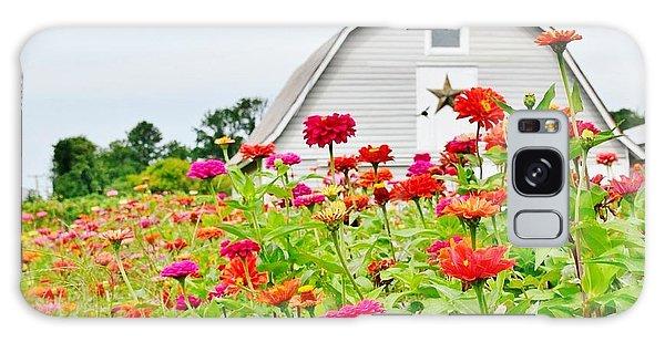 Raising Zinnia Flowers - Delaware Galaxy Case