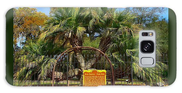 Rare Palm Tree Galaxy Case by Debra Forand