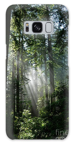 Rays In Redwoods Galaxy Case