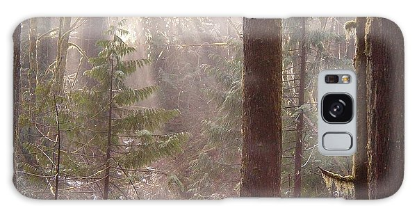 Rays Of Light In Forest Galaxy Case by Myrna Walsh