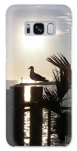 Ready For Sunset Galaxy Case by Bev Conover