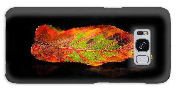 Reclining Leaf Galaxy Case