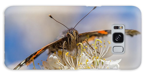 Red Admiral Butterfly On Plum Blossoms Galaxy Case