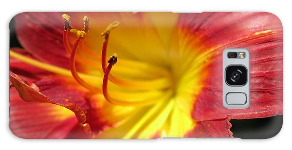 Red And Yellow Day Lily Galaxy Case