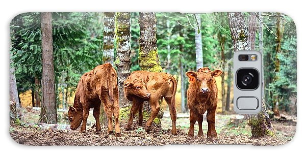Red Angus Calves Galaxy Case by Larry Campbell
