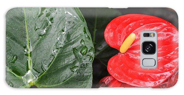 Red Anthurium Flower Galaxy Case by Denise Bird