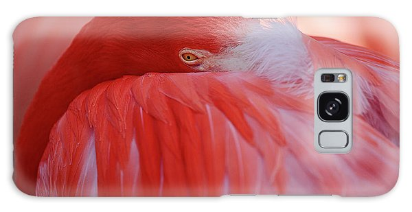 Feathers Galaxy Case - Red by Antje Wenner-braun