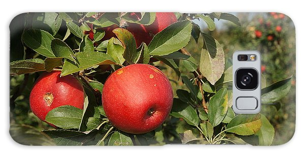 Red Apple Growing On Tree Galaxy Case