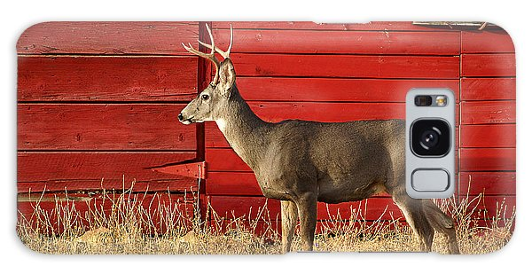 Red Barn Buck Galaxy Case